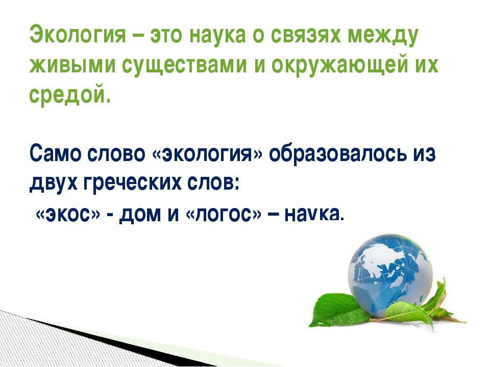 Что такое экология стр. 24 - 28. окружающий мир 3 класс 1 часть учебник плешаков а.а.