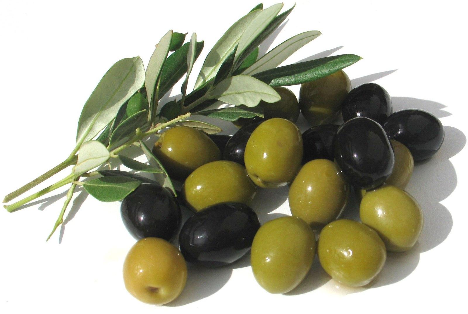 Оливки: польза и вред для организма | пища это лекарство