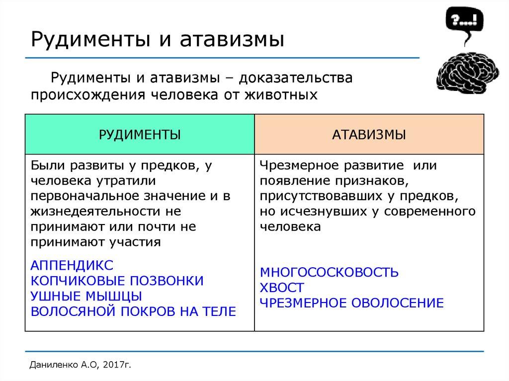 Что такое рудименты человека и зачем они до сих пор нужны - hi-news.ru
