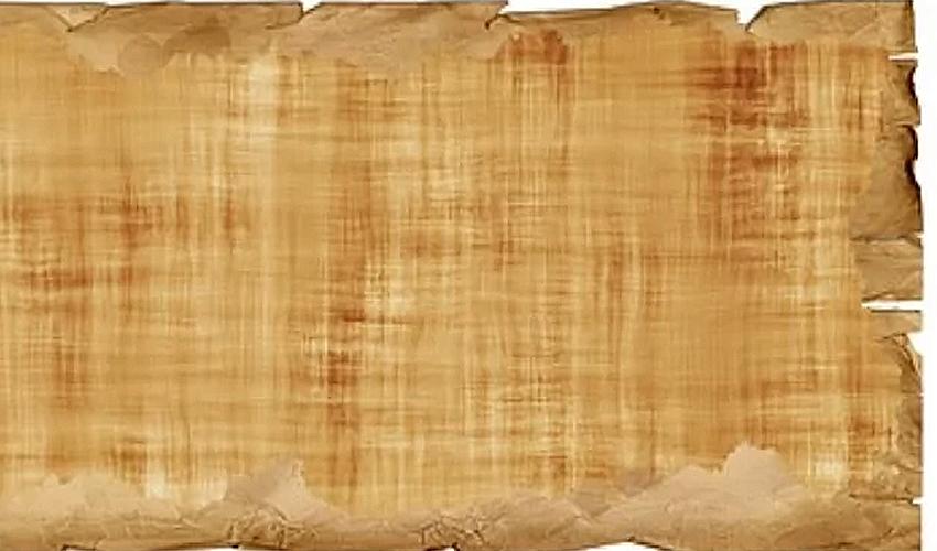 Значение слова «папирус» в 10 онлайн словарях даль, ожегов, ефремова и др. - glosum.ru