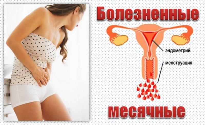 Менструация — википедия с видео // wiki 2