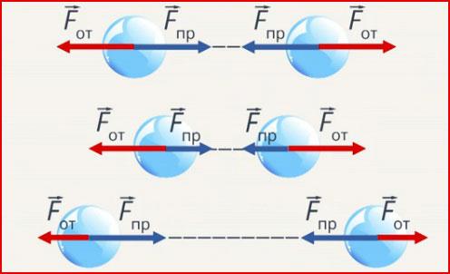 Электронное учебное пособие по разделу курса физики механика: упругие свойства твердых тел