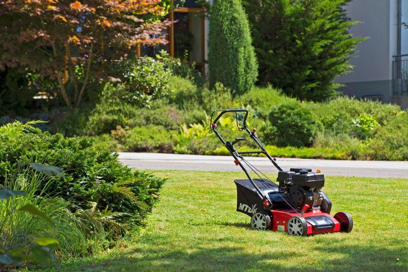 Скарификатор для газона – особенности выбора и применение