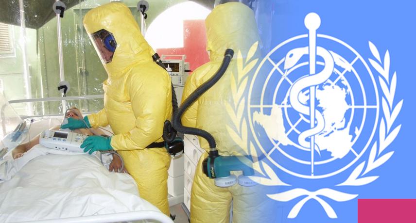 Воз заявила, что пандемии коронавируса нет и не было – новости руан