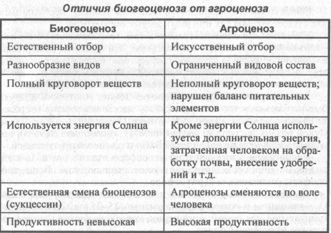 Природное сообщество - что это такое, занимаемое пространство и разнообразие видов | ktonanovenkogo.ru
