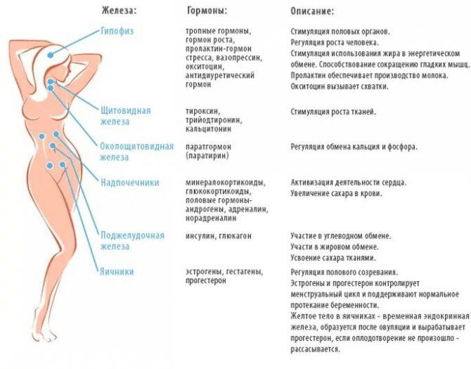 Гормональный сбой: симптомы, последствия, причины, лечение | wmj.ru