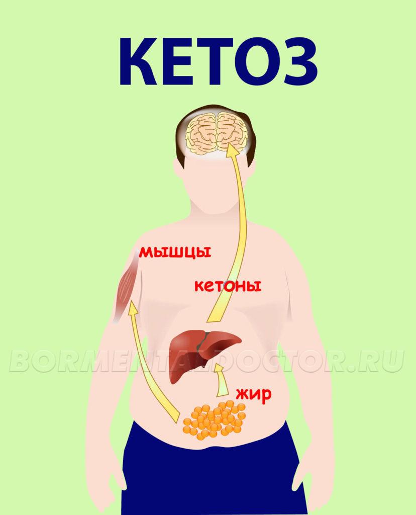Кето диета для начинающих - что нужно знать новичкам - кето