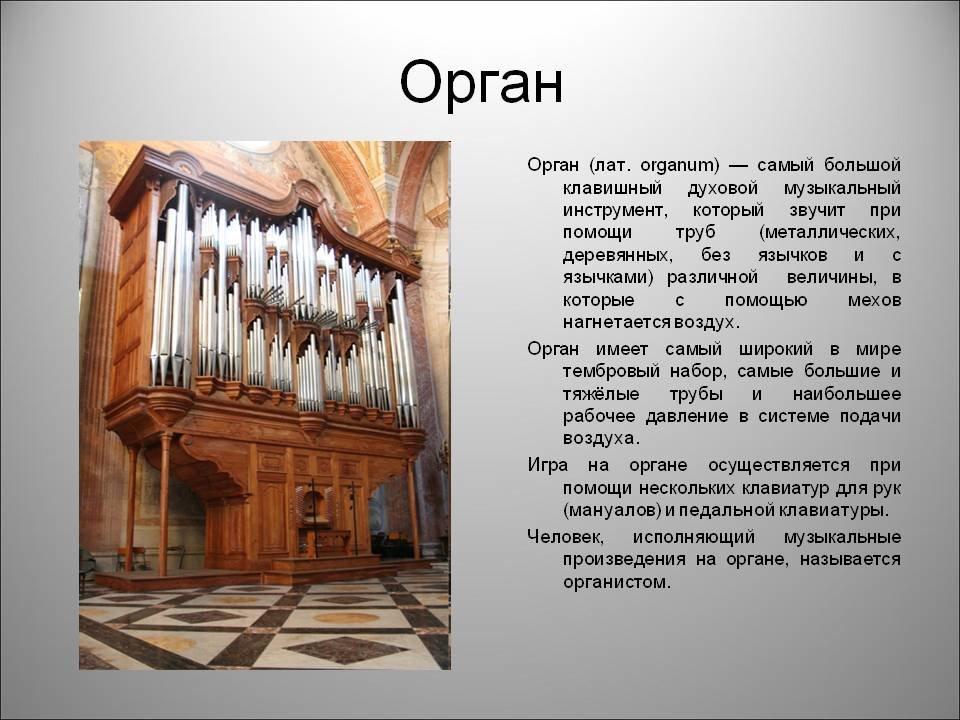 Орган что это? значение слова орган
