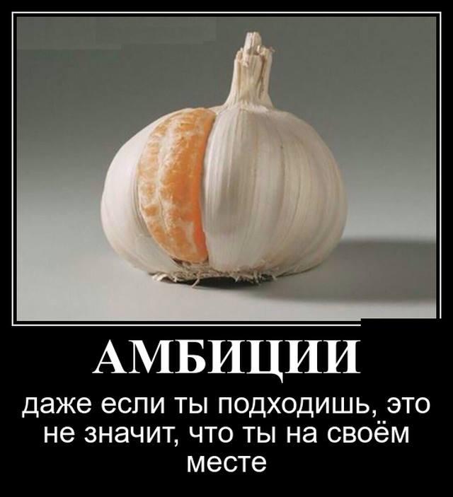 Амбициозность и амбициозный человек: что это такое в психологии | medeponim.ru