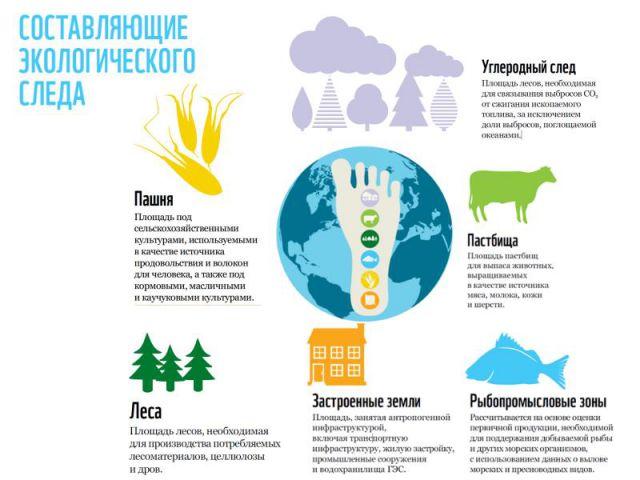 Экологический след — википедия. что такое экологический след