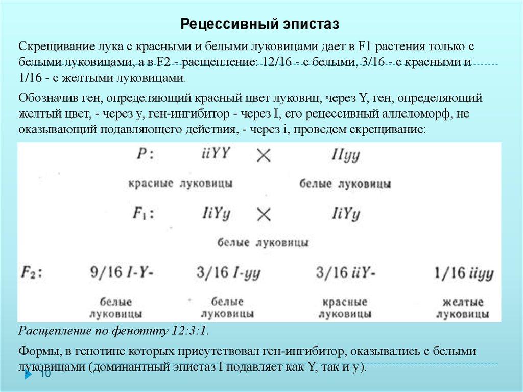 Лекция № 20. взаимодействие генов