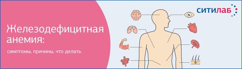 Сывороточное железо — норма для женского организма, дефицит, восполнение недостатка
