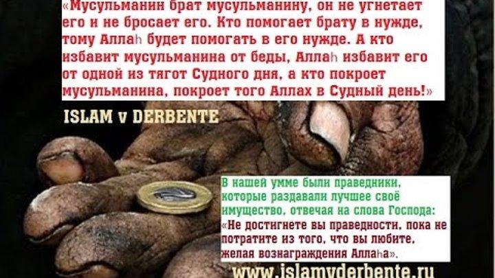 Условия выплаты садака фидия в месяц рамадан | islam global