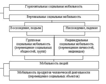 Социальная мобильность: общее определение, типы и их взаимосвязь, место человека в обществе