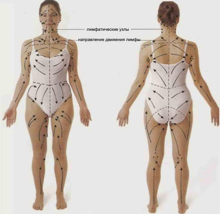 Лимфодренажный массаж: описание, показания и противопоказания, техники лимфодренажа