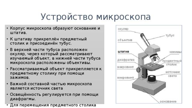 Что такое микроскоп? определение, фото :: syl.ru