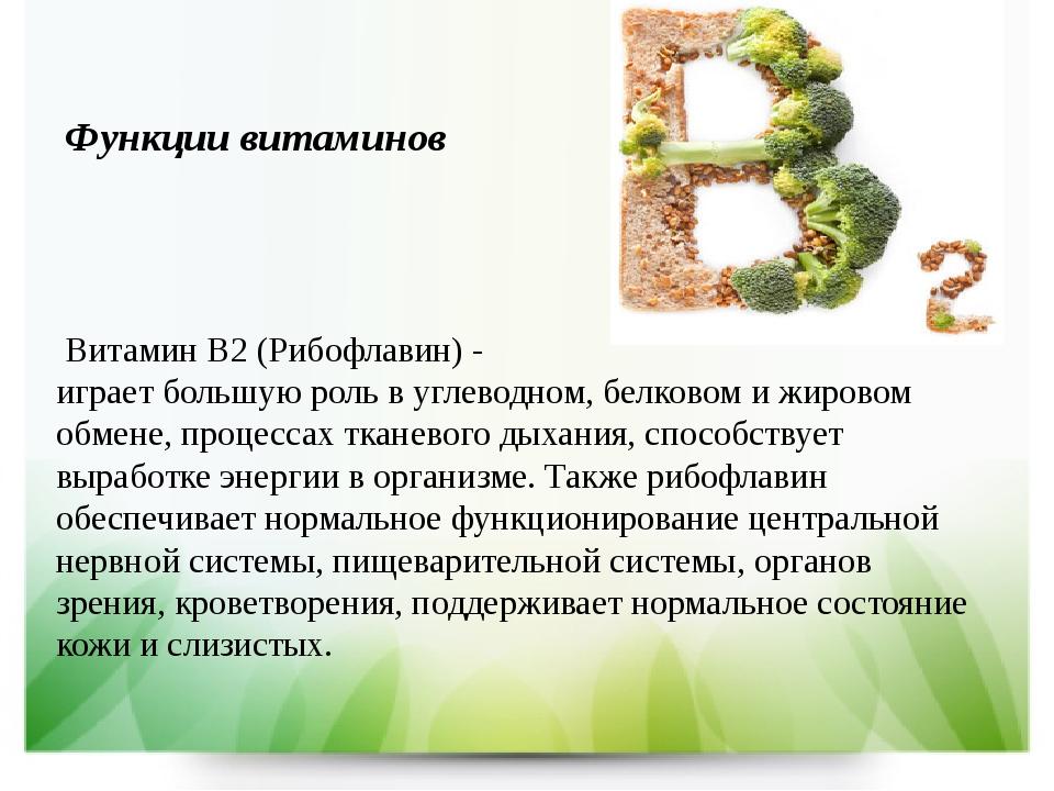 Витамин b2 (рибофлавин): свойства, польза источники в продуктах и норма