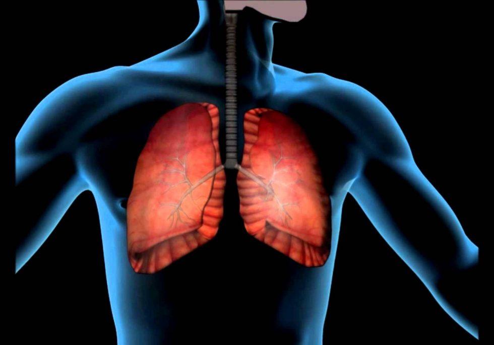 Плеврит. причины, симптомы, признаки, диагностика и лечение патологии :: polismed.com