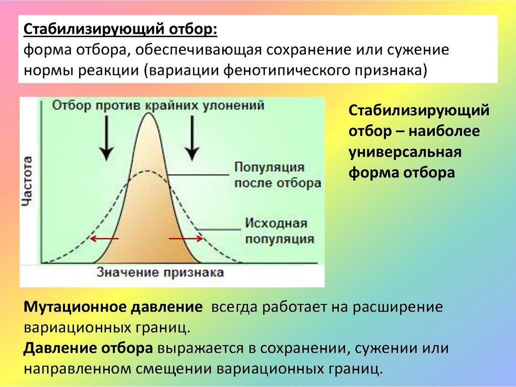 Естественный отбор: значение, источники и классификация