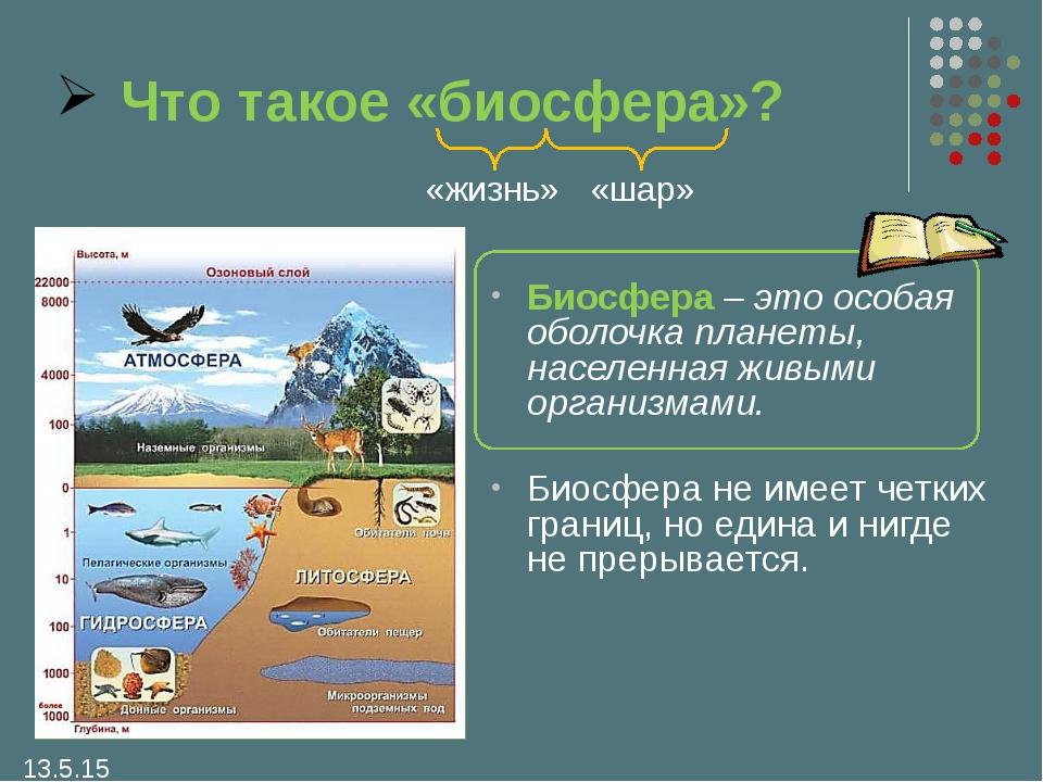 Что такое биосфера и чем она отличается от других оболочек? - other