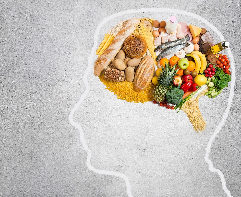 Пища — википедия. что такое пища