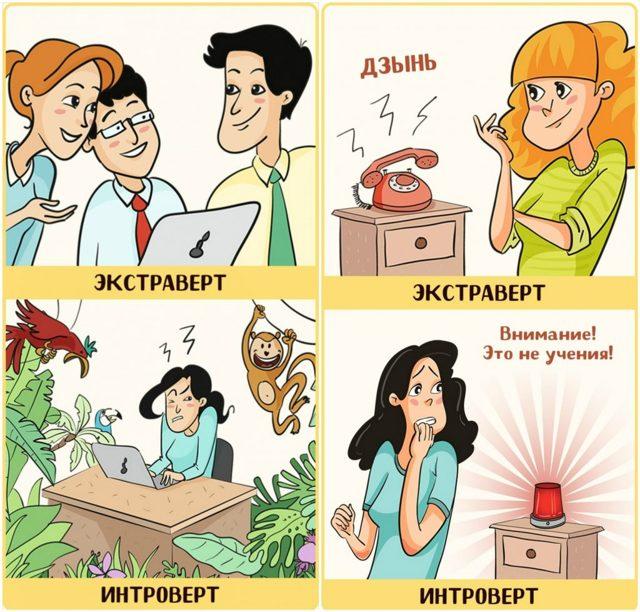 Интроверт: особенности характера, признаки, виды, тест, профессии