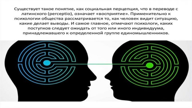 Социальная перцепция — что это такое в психологии