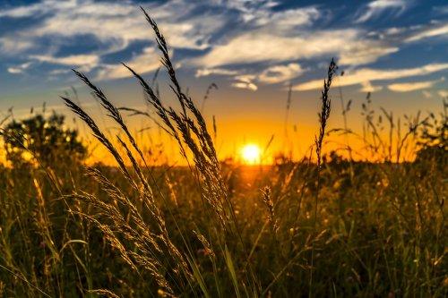Короткие стихи про лето для детей 3-4 лет