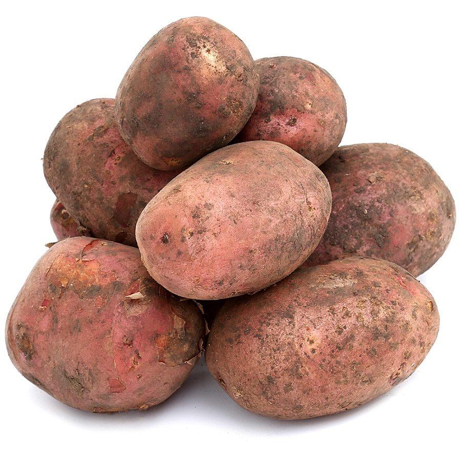 Картофель что это? значение слова картофель