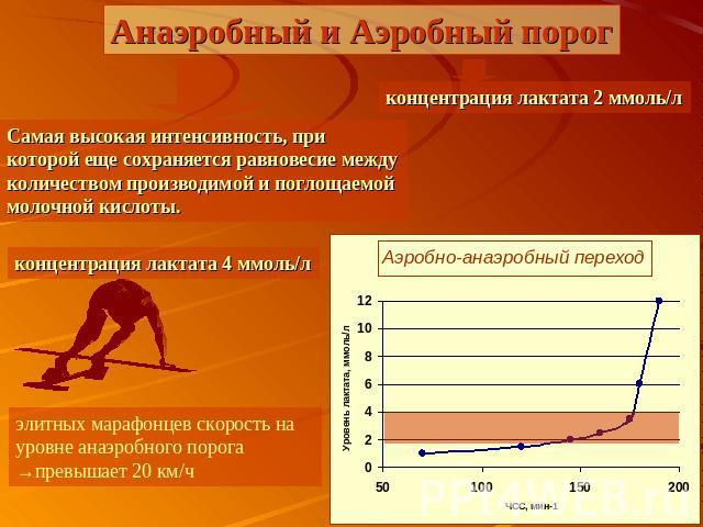 Аэробный и анаэробный бег - особенности и отличие