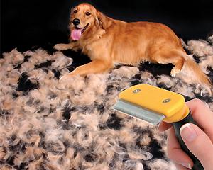 Фурминатор для собак крупных и мелких пород: для чего нужен, как выбрать и правильно пользоваться
