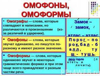 Примеры слов омофонов