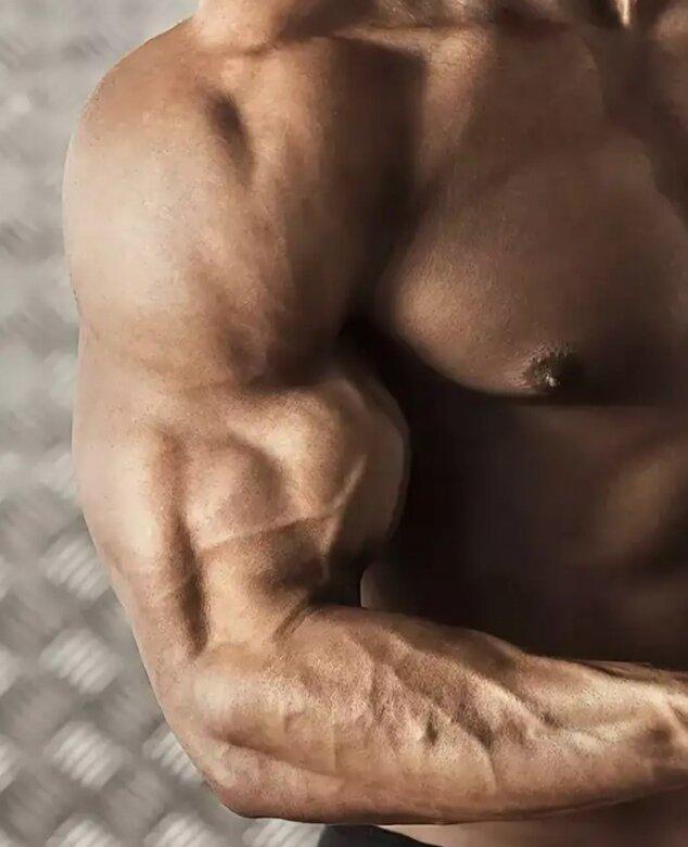 Пампинг в бодибилдинге: важная часть силовых тренировок