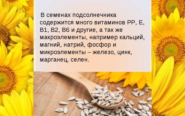 Семечки подсолнуха польза и вред наносимые организму - vsadu.ru