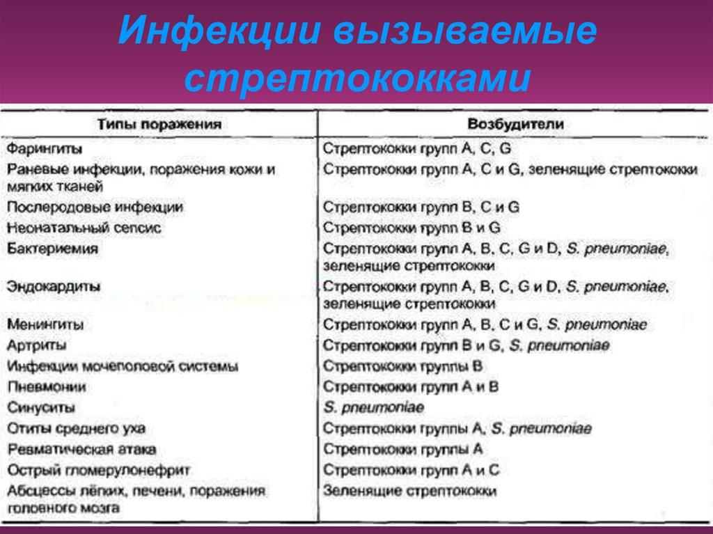 Стрептококк группы а - виды бактерий, пути заражения и симптомы, диагностика, методы лечения детей и взрослых