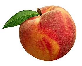 Персик - полезные свойства и противопоказания, состав, калорийность, рецепты. как вырастить персик в домашних условиях