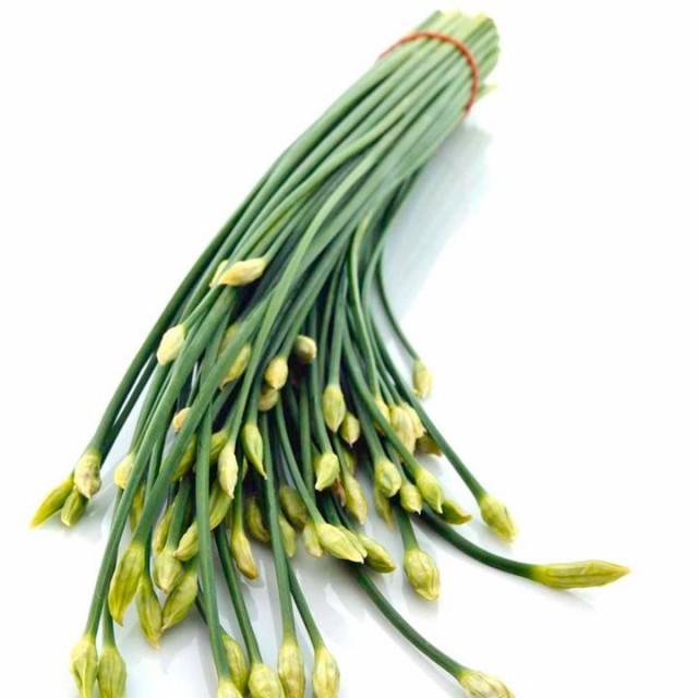 Лук джусай: фото, описание сорта, посадка и выращивание из семян
