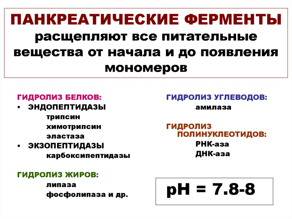 Липаза: норма, повышенный, пониженный уровень в крови - kardiobit.ru