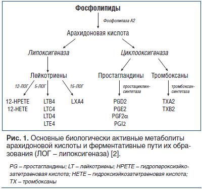 Стероидные противовоспалительные средства: инструкция для первостольника