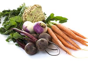 Что такое корнеплод, какие бывают виды: картофель, морковь, пастернак, сельдерей, редис, топинамбур + состав