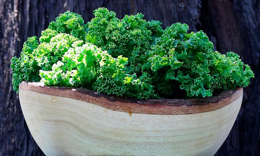 Чудо-капуста кейл: что это такое, полезные свойства и рецепты приготовления