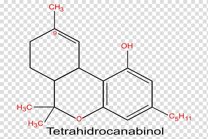 Тетрагидроканнабинол — википедия с видео // wiki 2