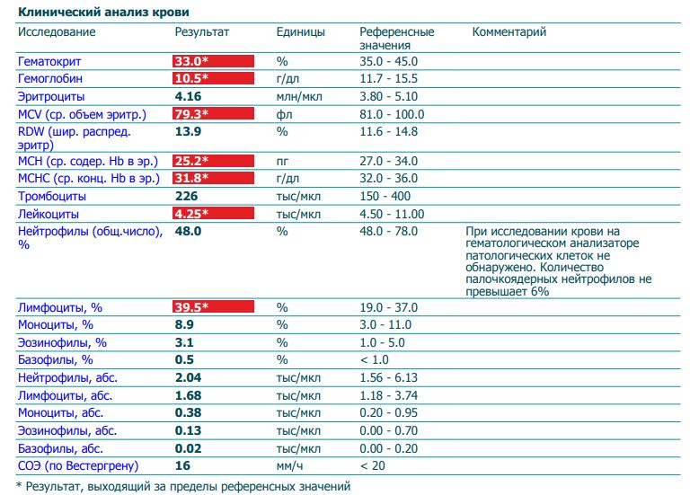 Какая норма лимфоцитов в крови и их функции