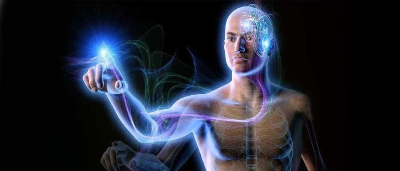 Темное мышечное чувство: как тело «видит» мышцами — тестостерон