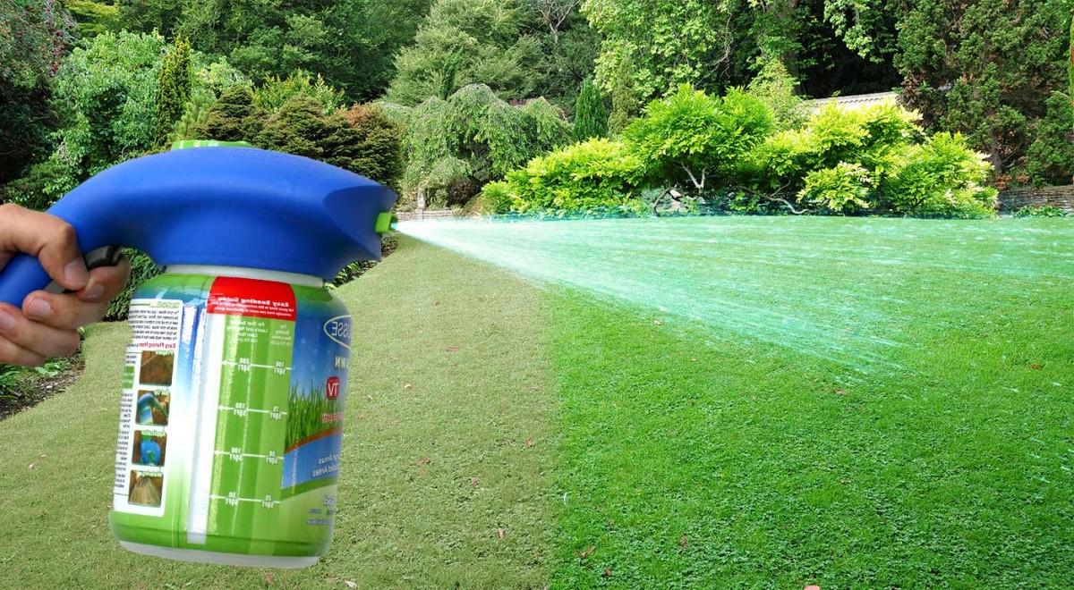 Жидкий газон: обустройство зеленой лужайки за один сезон