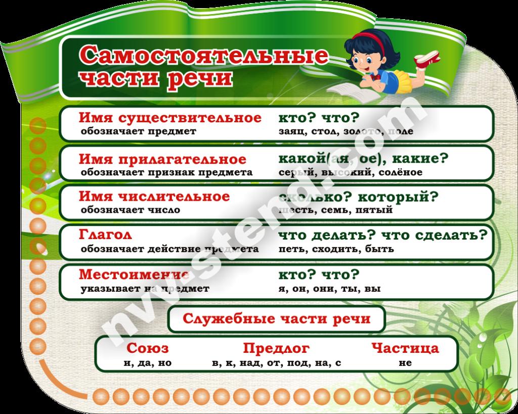 Части речи в русском языке - самостоятельные и служебные