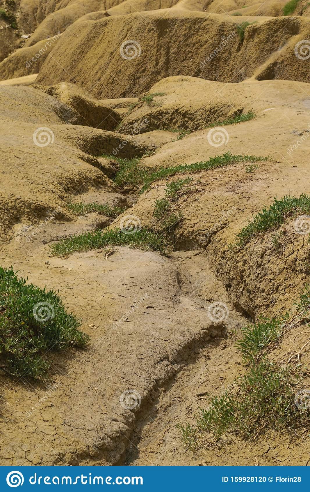 Опустынивание: что это такое, причины и последствия