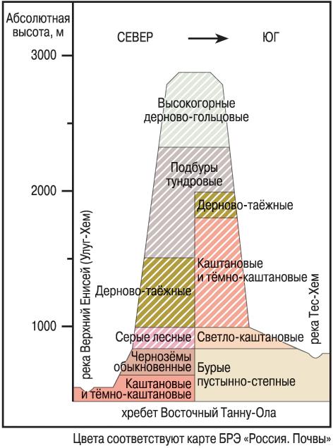 Почвенный профиль — википедия. что такое почвенный профиль
