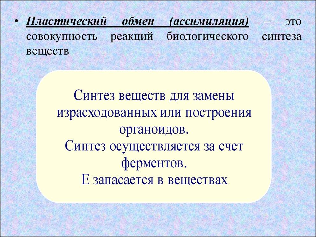 Транскрипция и трансляция