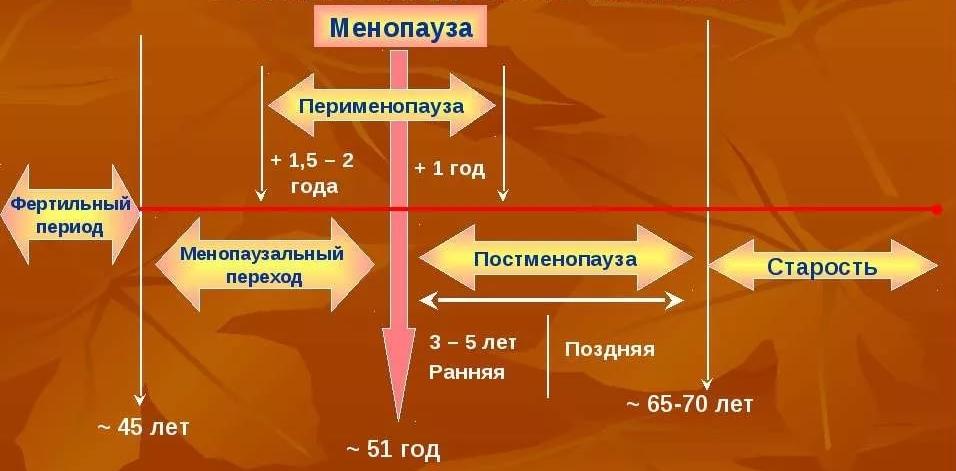 Перименопауза - что это такое, симптомы и лечение в перименопаузе